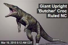 Giant Upright 'Butcher' Croc Ruled NC