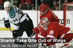 Sharks Take Bite Out of Wings