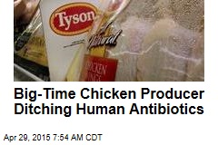 Big-Time Chicken Producer Ditching Human Antibiotics