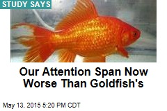 Our Attention Span Worse Than That of a Goldfish