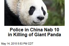 Police in China Nab 10 in Killing of Giant Panda