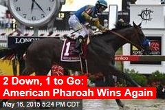 2 Down, 1 to Go: American Pharoah Wins Again