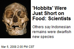 'Hobbits' Were Just Short on Food: Scientists