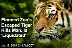 Flooded Zoo's Escaped Tiger Kills Man, Is 'Liquidated'
