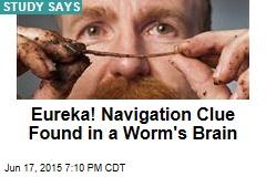 Eureka! Navigation Clue Found in a Worm's Brain