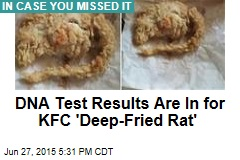 DNA Test Results Are In for KFC 'Deep-Fried Rat'