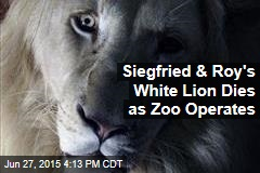 Siegfried & Roy's White Lion Dies as Zoo Operates