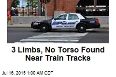 3 Limbs, No Torso Found Near Train Tracks