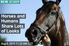 Horses and Humans Share Lots of Looks