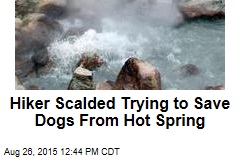Hiker Scalded Trying to Save Dogs From Hot Spring