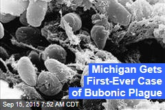 Michigan Gets First-Ever Case of Bubonic Plague