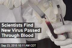 Scientists Find New Virus Passed Through Blood