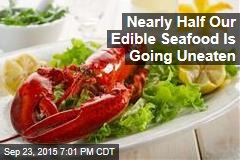 Nearly Half Our Edible Seafood Is Going Uneaten