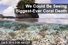 We Could Be Seeing Biggest-Ever Coral Death