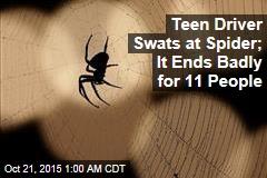 Spider Blamed for Crash That Injured 11