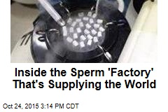 Inside the Sperm 'Factory' That's Supplying the World