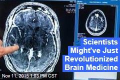 Scientists Might've Just Revolutionized Brain Medicine