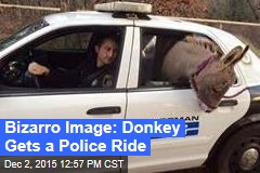 Bizarro Image: Donkey Gets a Police Ride