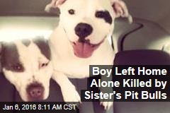 Boy Left Home Alone Killed by Sister's Pit Bulls