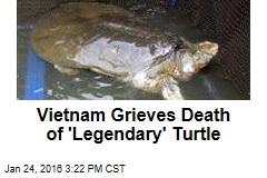 Vietnam Anxious Over Death of 'Legendary' Turtle
