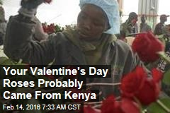 Your Valentine's Day Roses Probably Came From Kenya