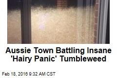 Aussie Town Battling Insane 'Hairy Panic' Tumbleweed