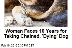 Woman Faces 10 Years for Taking Chained, 'Dying' Dog