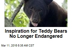 Inspiration for Teddy Bears No Longer Endangered
