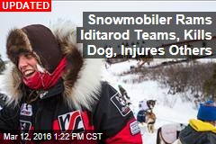 Snowmobiler Rams Iditarod Teams, Kills Dog, Injures Others