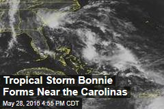 Tropical Storm Bonnie Forms Near the Carolinas