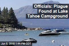 Officials: Plague Found at Lake Tahoe Campground