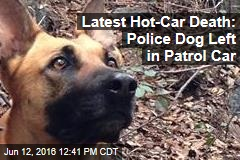 Latest Hot-Car Death: Police Dog Left in Patrol Car