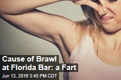Cause of Brawl at Florida Bar: a Fart