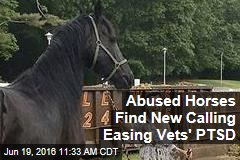 Abused Horses Find New Calling Easing Vets' PTSD