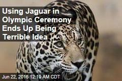 Jaguar Shot Dead After Olympic Ceremony
