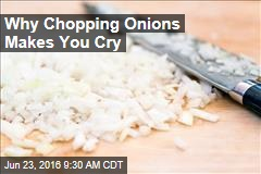 Why Chopping Onions Makes You Cry