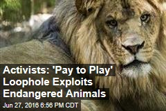 Activists: 'Pay to Play' Loophole Exploits Endangered Animals
