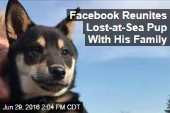 Facebook Reunites Lost-at-Sea Pup With His Family