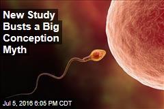New Study Busts a Big Conception Myth