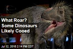 What Roar? Some Dinosaurs Likely Cooed