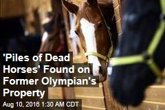 'Piles of Dead Horses' Found on Former Olympian's Property