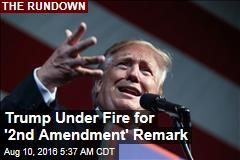Trump Under Fire for '2nd Amendment' Remark