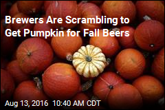 Brewers Are Scrambling to Get Pumpkin for Fall Beers