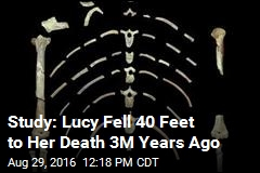 Study: Lucy Fell 40 Feet to Her Death 3M Years Ago