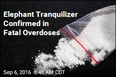 Elephant Tranquilizer Confirmed in Fatal Overdoses