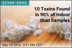 Dust in Your Home Could Be Teeming With Toxins