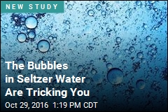 The Bubbles in Seltzer Water Are Tricking You