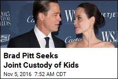Brad Pitt Seeks Joint Custody of Kids