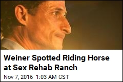 Weiner Spotted Riding Horse at Sex Rehab Ranch