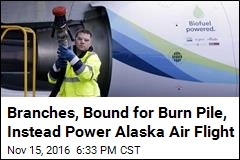Branches, Bound for Burn Pile, Instead Power Alaska Air Flight